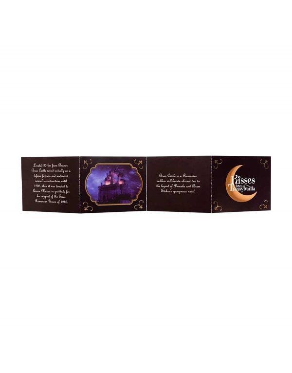 Trufe_de_ciocolata_cu_crema_de_fructe_de_soc_-_Kisses_from_Transylvania_3.jpg